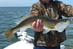 trout fishing charters near orlando