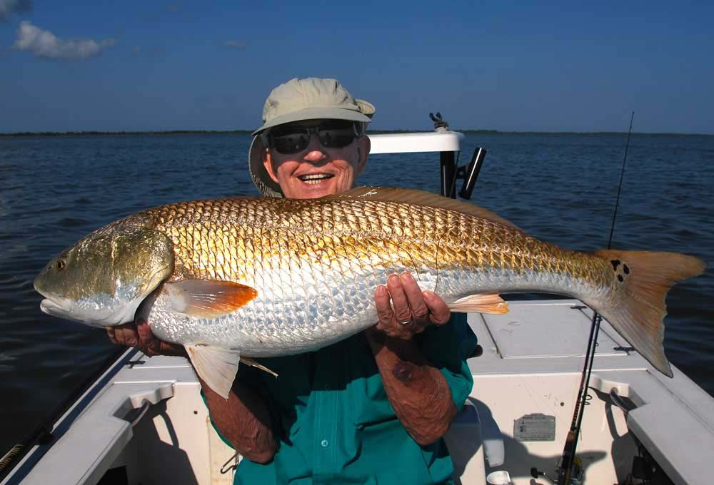 Central florida redfish galleryredfish charters near orlando for How to fish for redfish