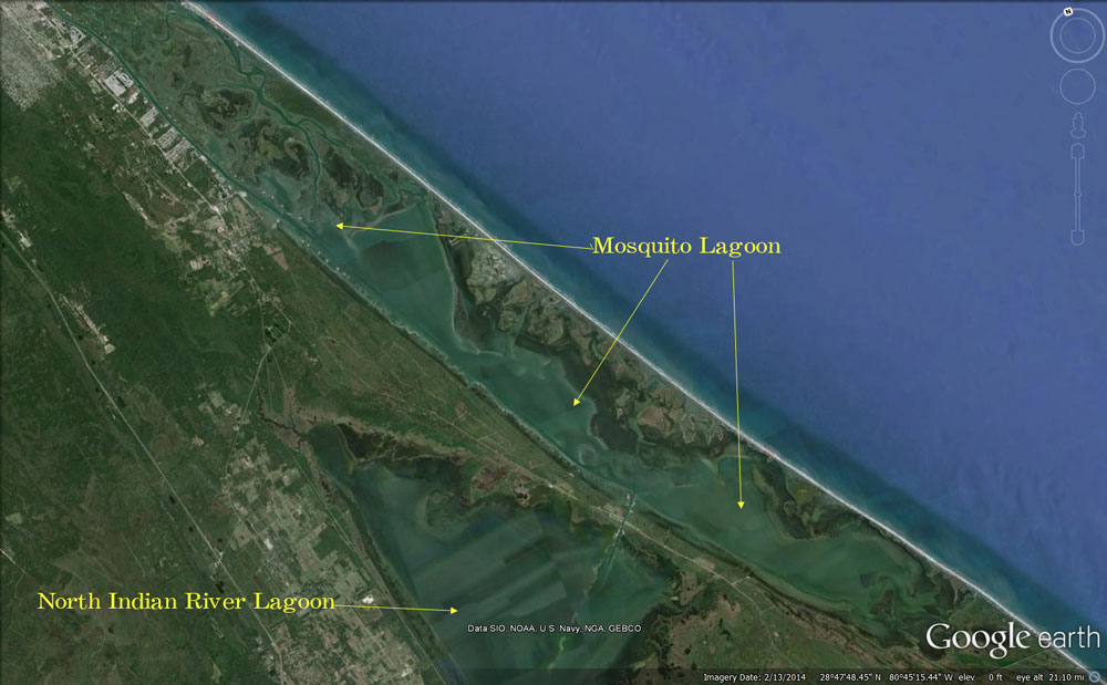 Mosquito lagoon fishing guide information mosquito lagoon for Mosquito lagoon fishing