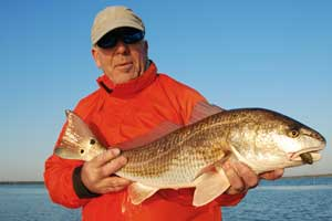 fishing charters for redfish near disney world